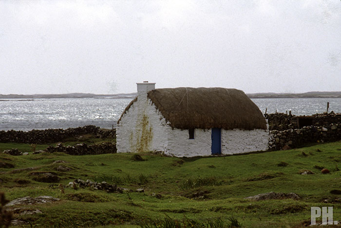 Cottage 04